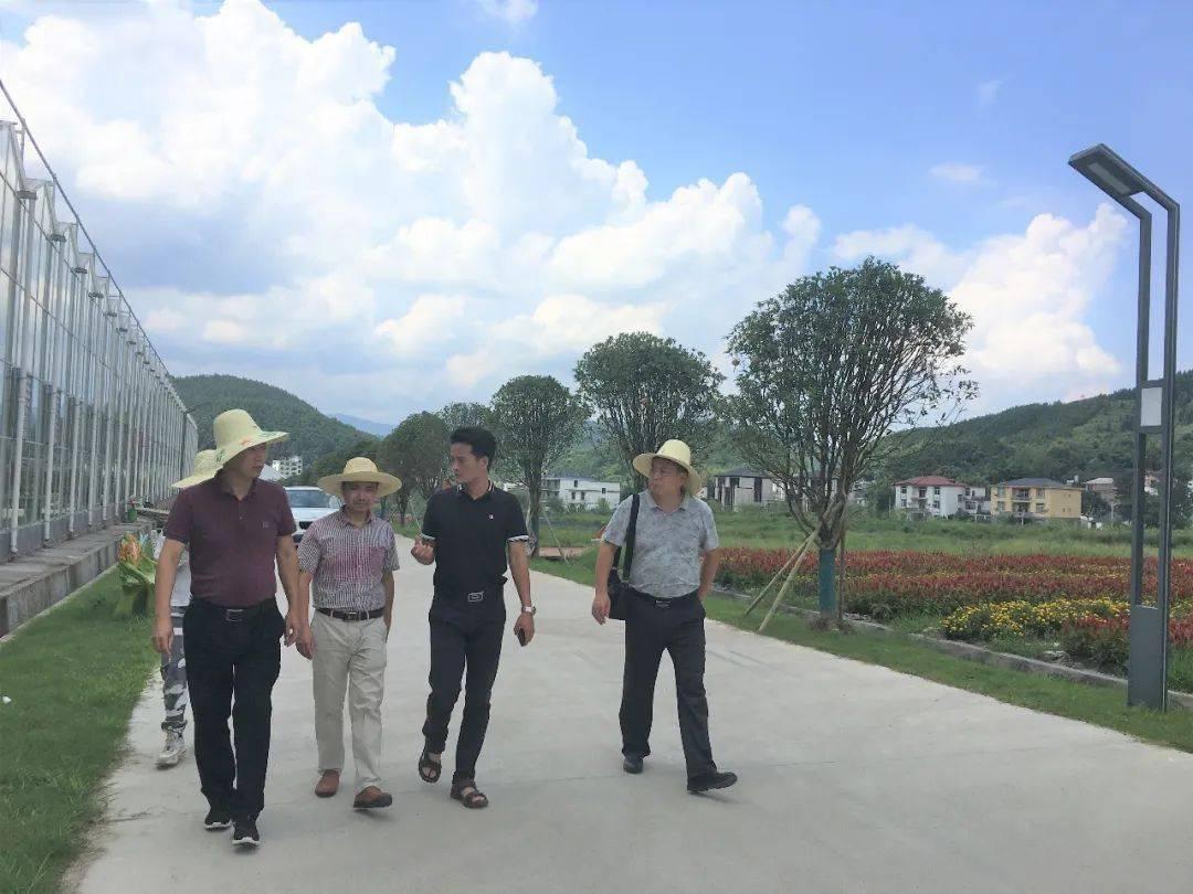 萍乡实验学校图片