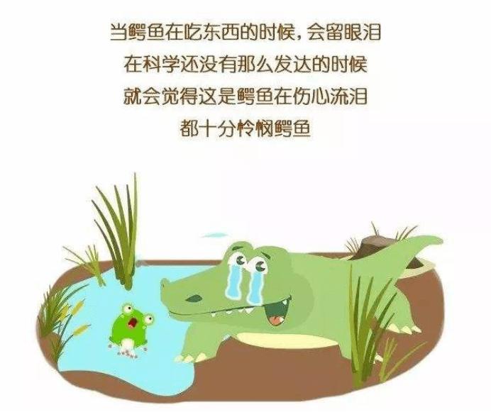 鳄鱼的眼泪可以用来治疗干眼吗?(图2)