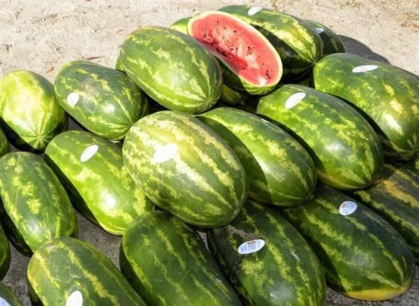 龙果是一种热带水果大多数人对它并不生疏 湿气重吃辣椒