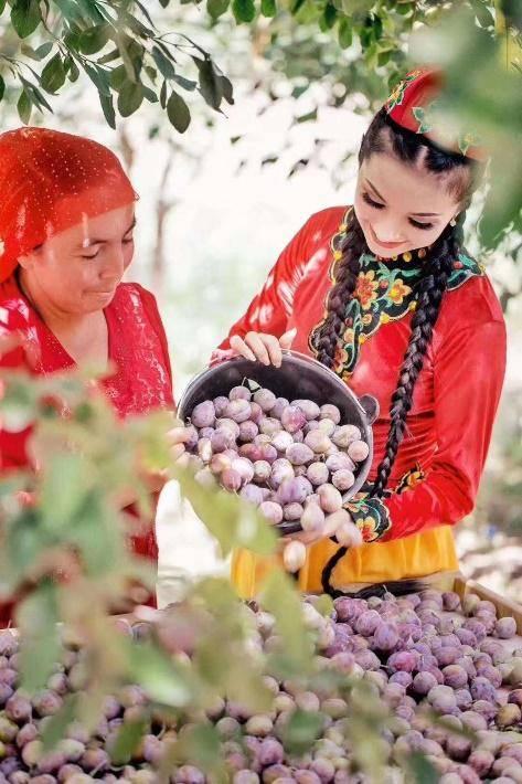 温州援疆动员拜城农产物销售