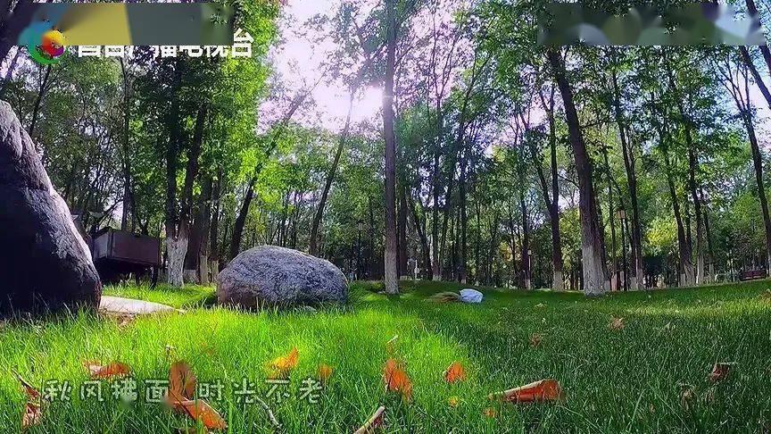 这里秋色正好·昌吉人民公园