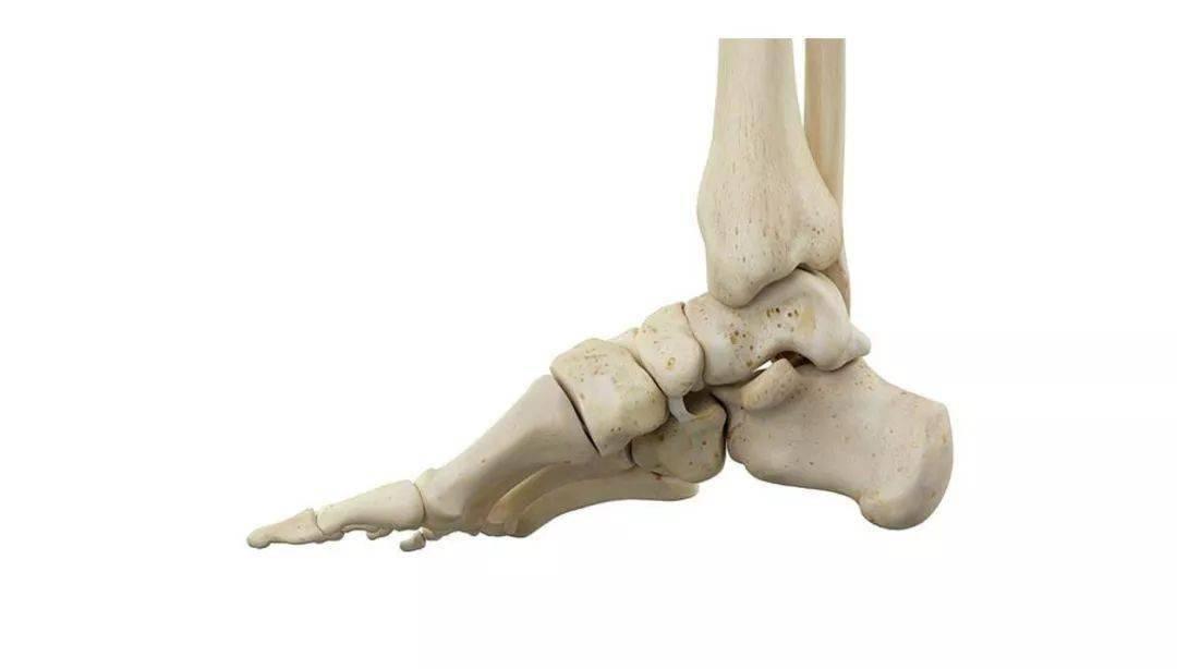 """堪称""""天然减震器""""的足弓,在瑜伽练习中如何激活它?"""