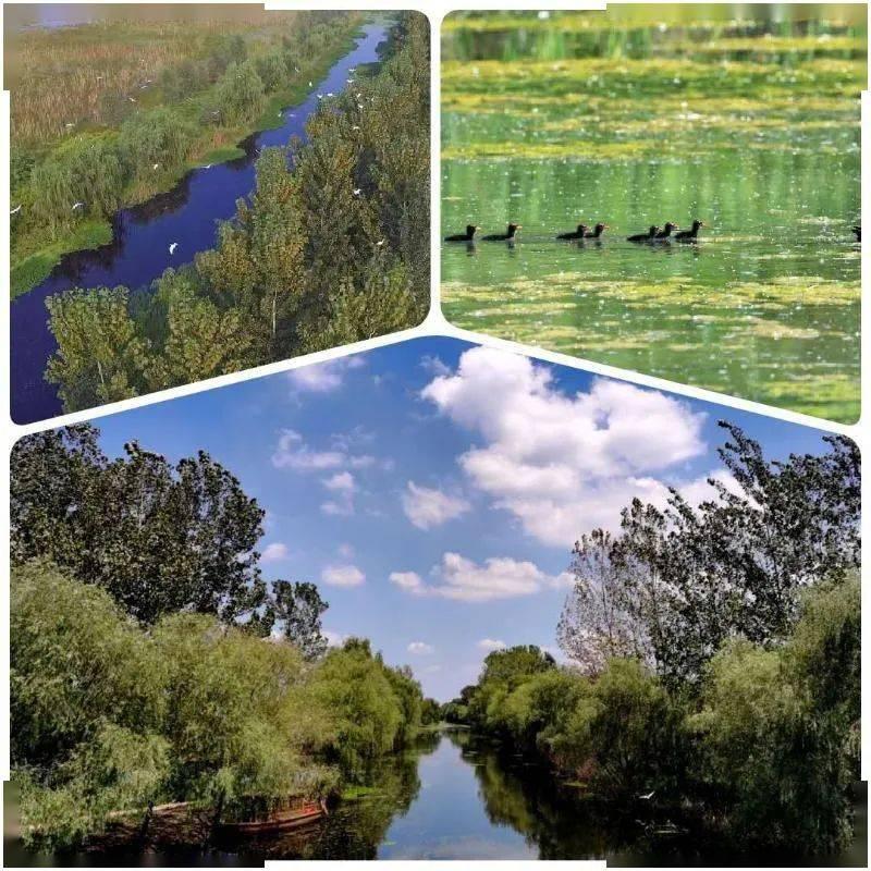 漂亮的!快来看蚌埠的河湖美景!