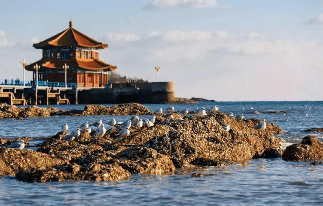 十一旅游出行指南 | 遇见青岛