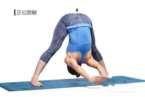 瑜伽八式,排除体内毒素,令肌肤光泽有弹性!