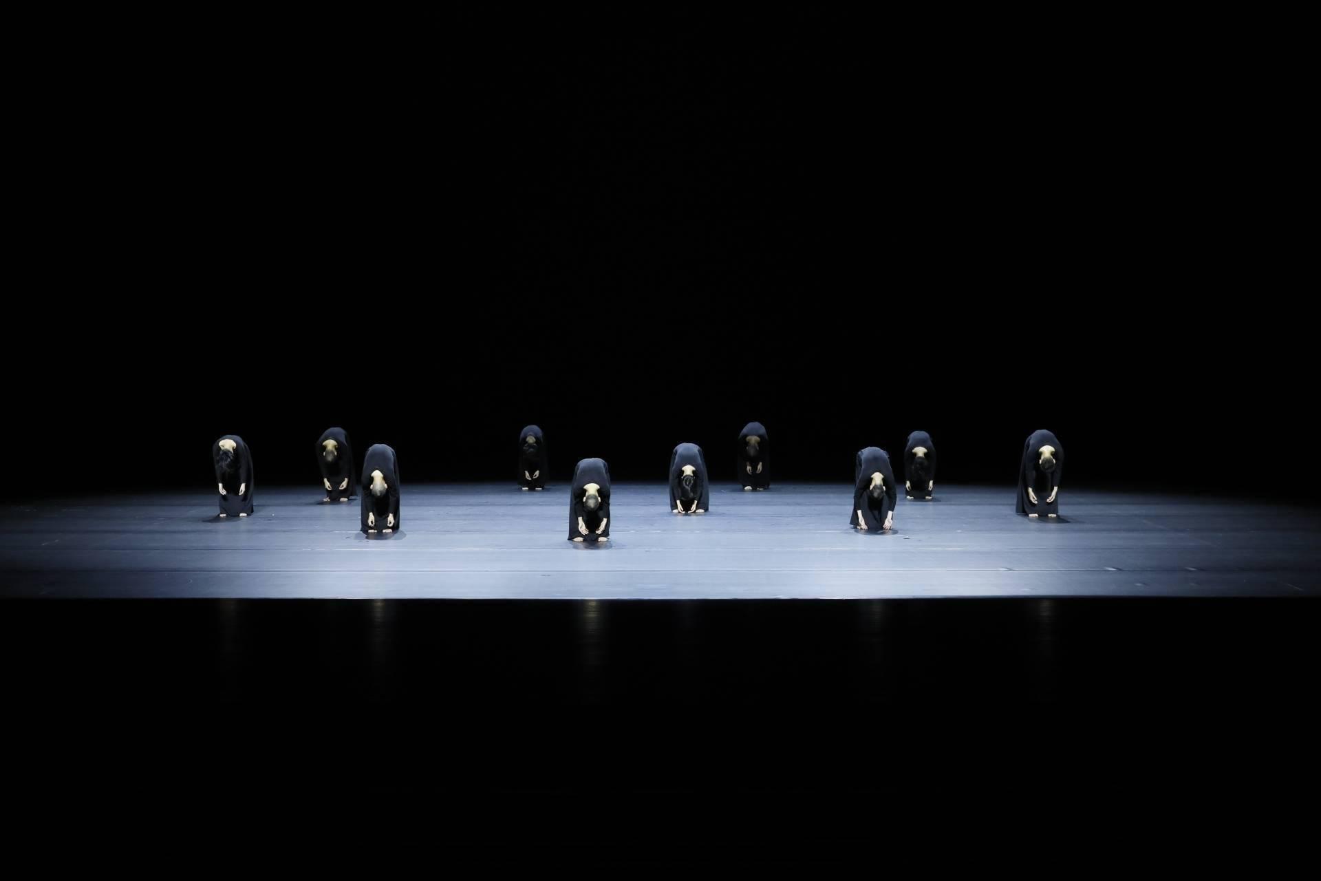 """用旋转的舞步讲述生命的思考 陶身体剧场亮相""""蓉城之秋"""""""