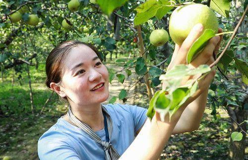 安徽砀山:返乡青年成扶贫新力量
