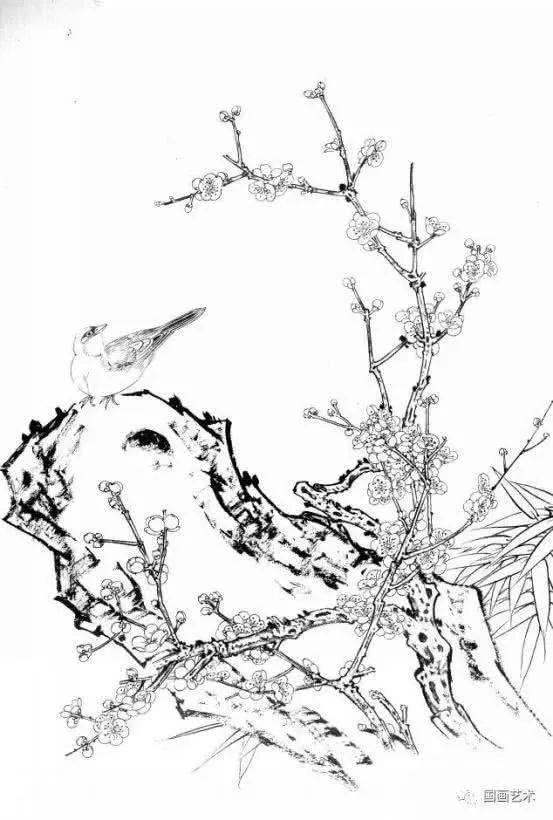 白描素材,多幅梅花小鸟