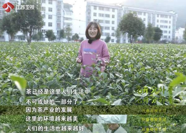 江苏卫视播出《石头开花》特别节目 剧集主创、基层干部共话扶贫