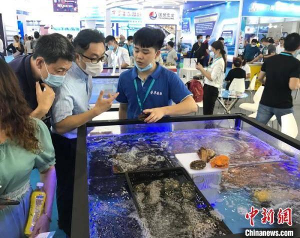 厦门首办国际海鲜展 四国驻华大使站台