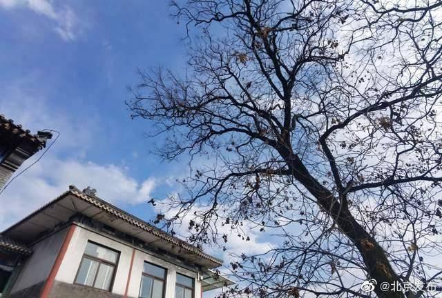 北京:前10个月优良天数同比增31天