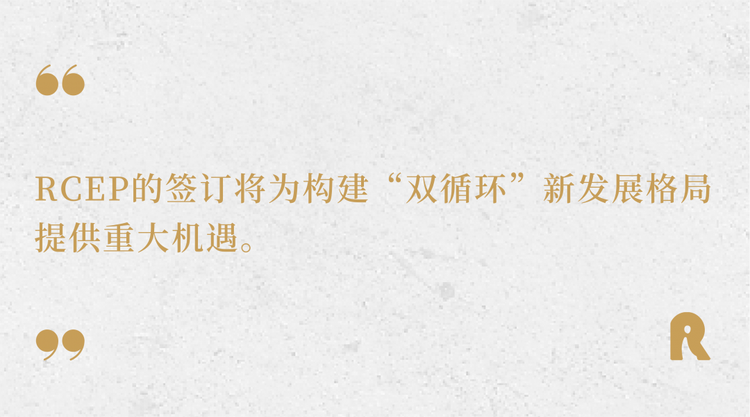 张明陈:抓住机遇塑造发展新格局