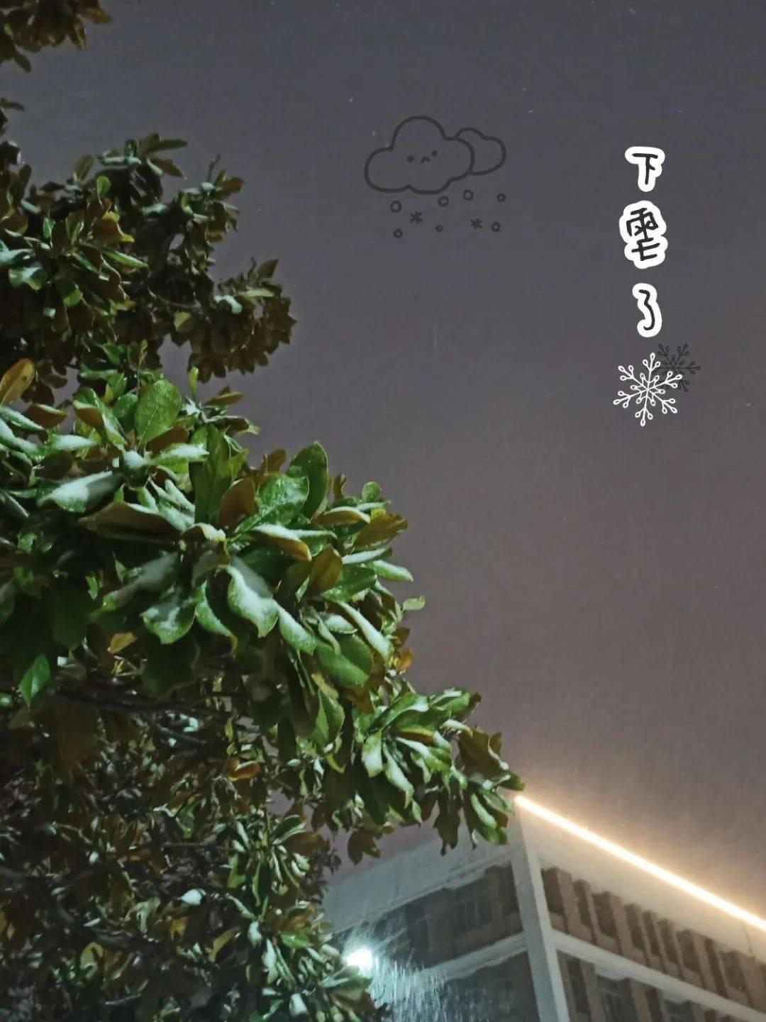少年歌行苏暮雨图片
