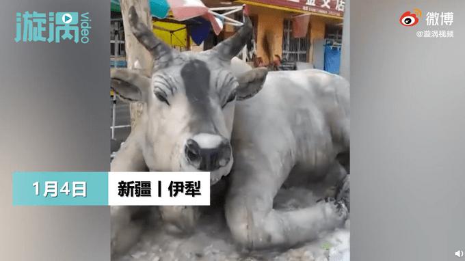 新疆大叔凭想象堆出逼真雪牛 网友:这是真牛被冻住了吧