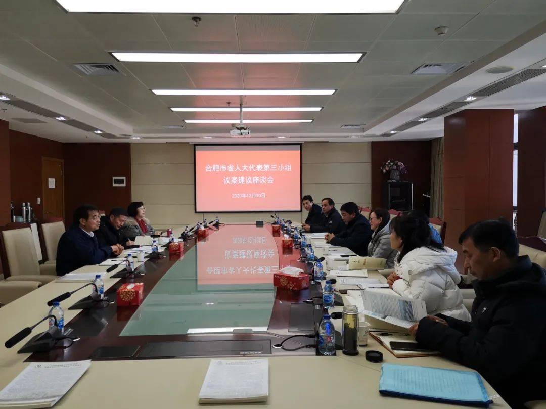 合肥市省人大代表第三小组召开议案建议座谈会