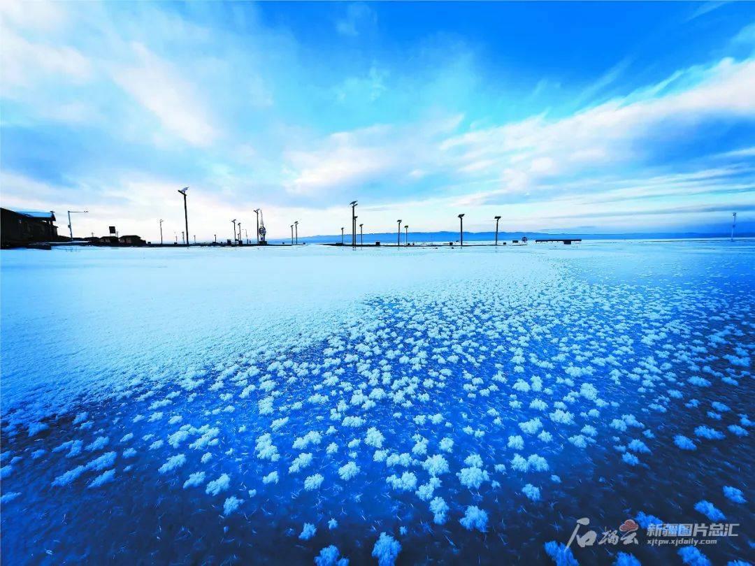 今日小寒|凛冬已至 静待风暖