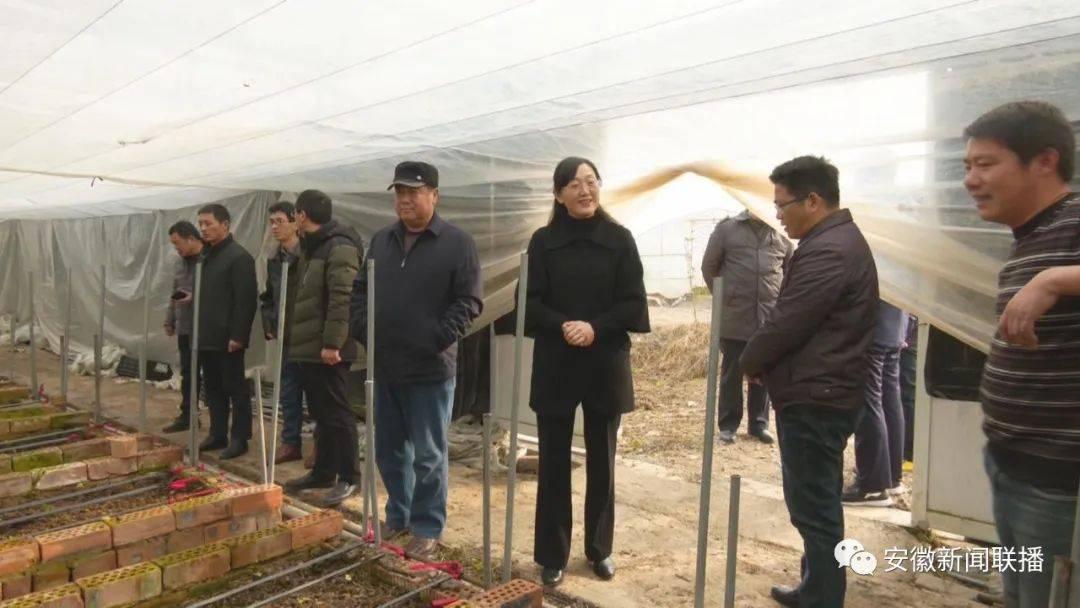 省级专家宣讲团在滁州、蚌埠、六安宣讲党的十九届五中全会精神