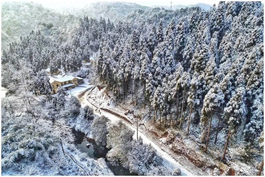 【央广网·视听四川】冰天雪地里,四川人耍雪热情高