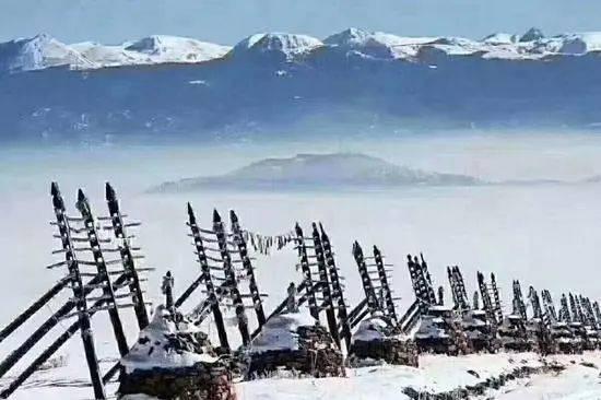 云南:有暖阳也有风雪,有牛羊也有烈酒,来香格里拉相聚吧!