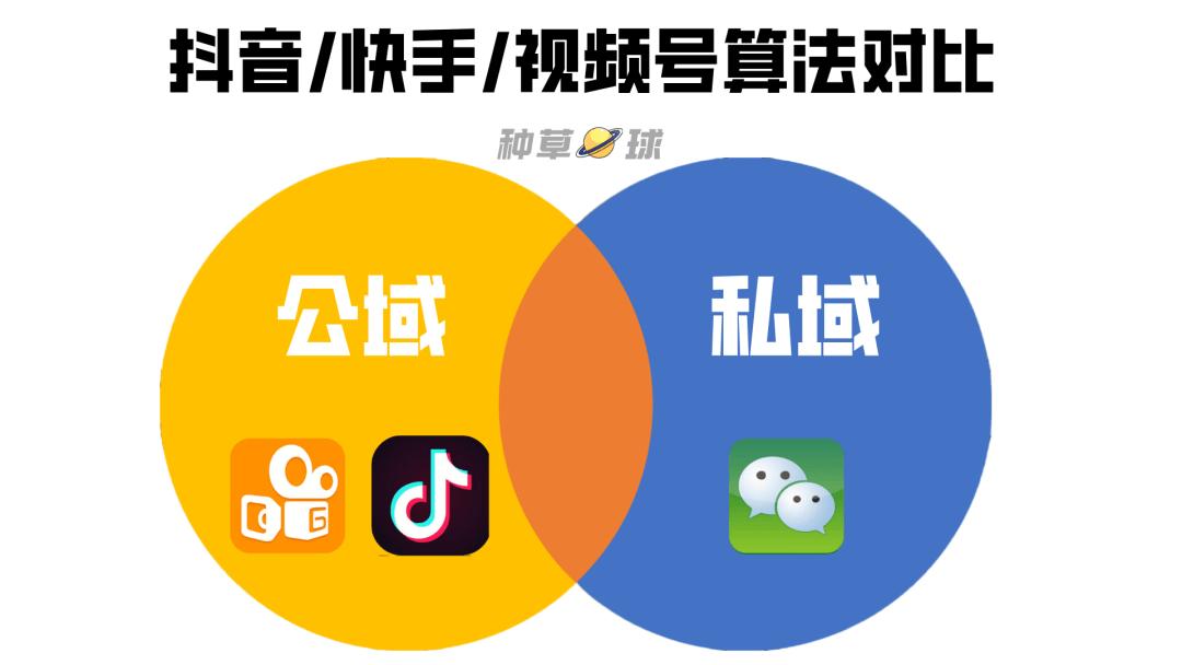 """视频号破局:生于""""社交"""",困于""""社交"""""""