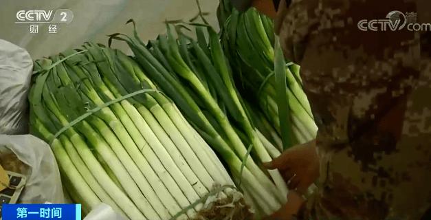 """""""速冻""""模式开启!蔬菜裹着好几层棉被进市场!这些蔬菜价格""""坐火箭""""→"""