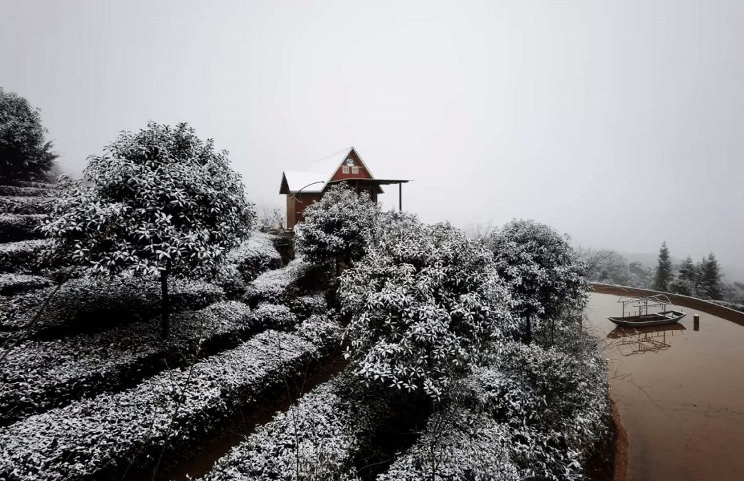 快看!泸州今天很多地方都下雪了!~