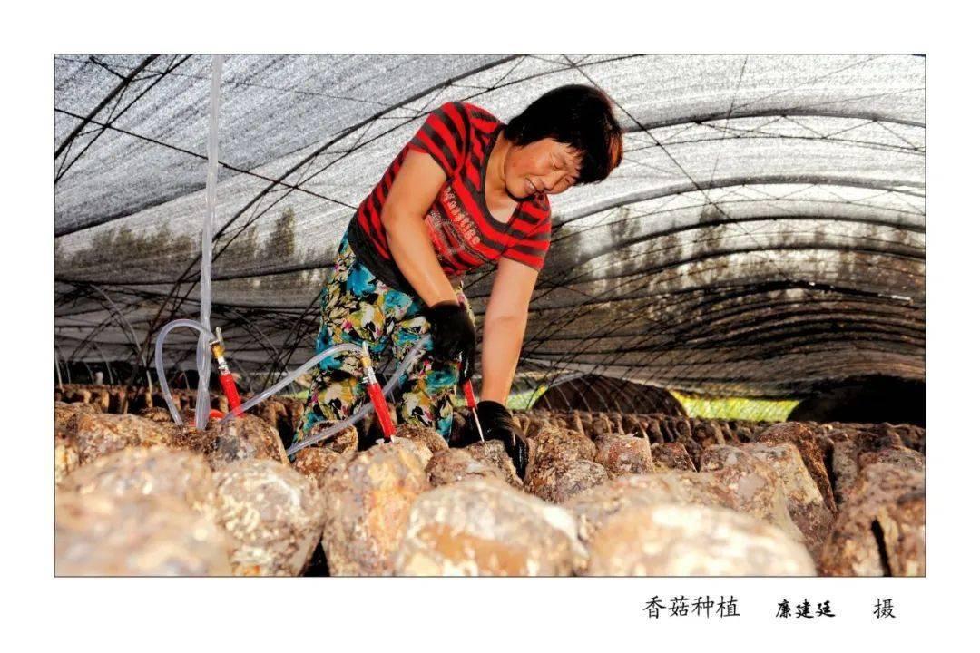 【展扶贫成效】沁水县:脱贫攻坚 奋进小康——摄影展  第15张