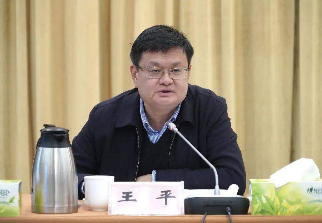 全面升级!上海教育民心工程更细致、更温情、覆盖更广  第2张
