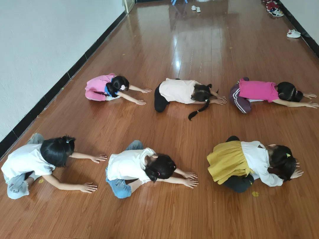 小小舞蹈家  第12张