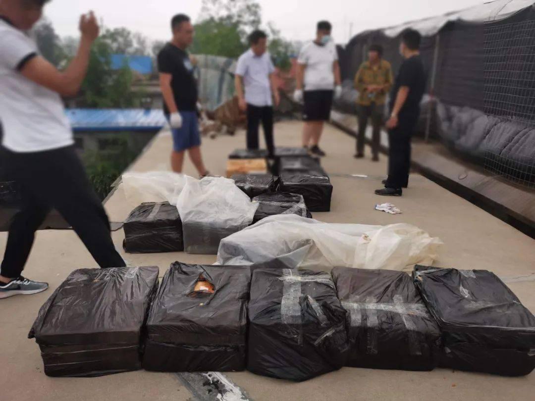 恩平警方破获一起制贩毒案上央视了,跨省抓获71人!