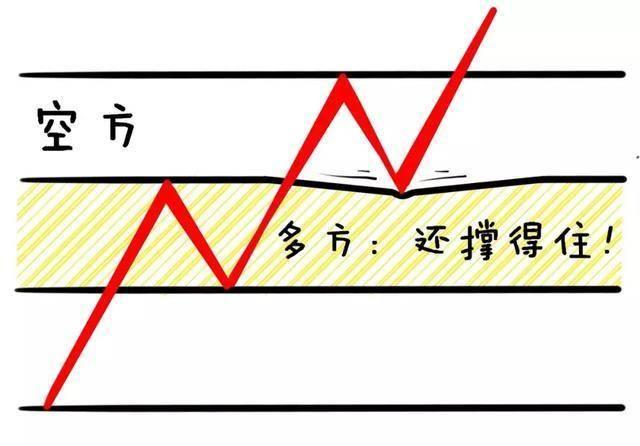 涨停是什么意思(股票涨停是怎么回事)插图(20)