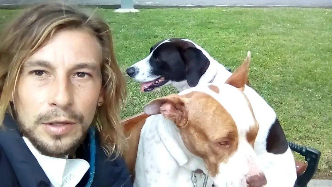 为了带两只流浪狗回国,男子拒绝大使馆专机,骑自行车辗转40天
