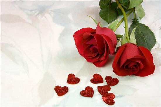 数字代表的爱情含义(数字含义爱情1-1000)