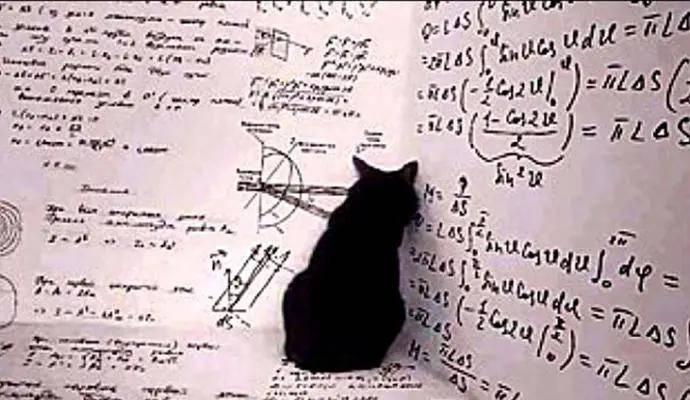 薛定谔的猫比喻什么(薛定谔的猫通俗解释)