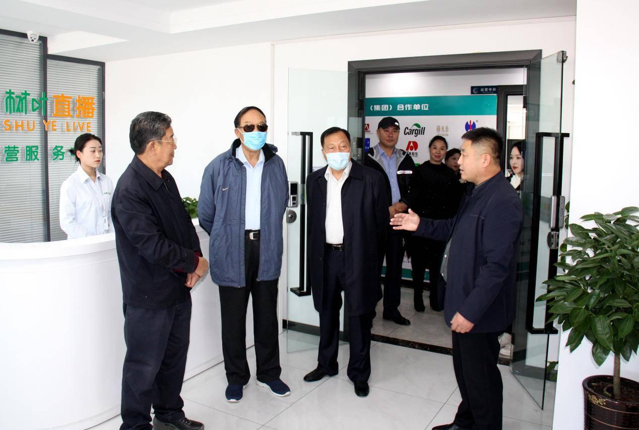 喜报丨省政府领导莅临树叶商城视察指导工作
