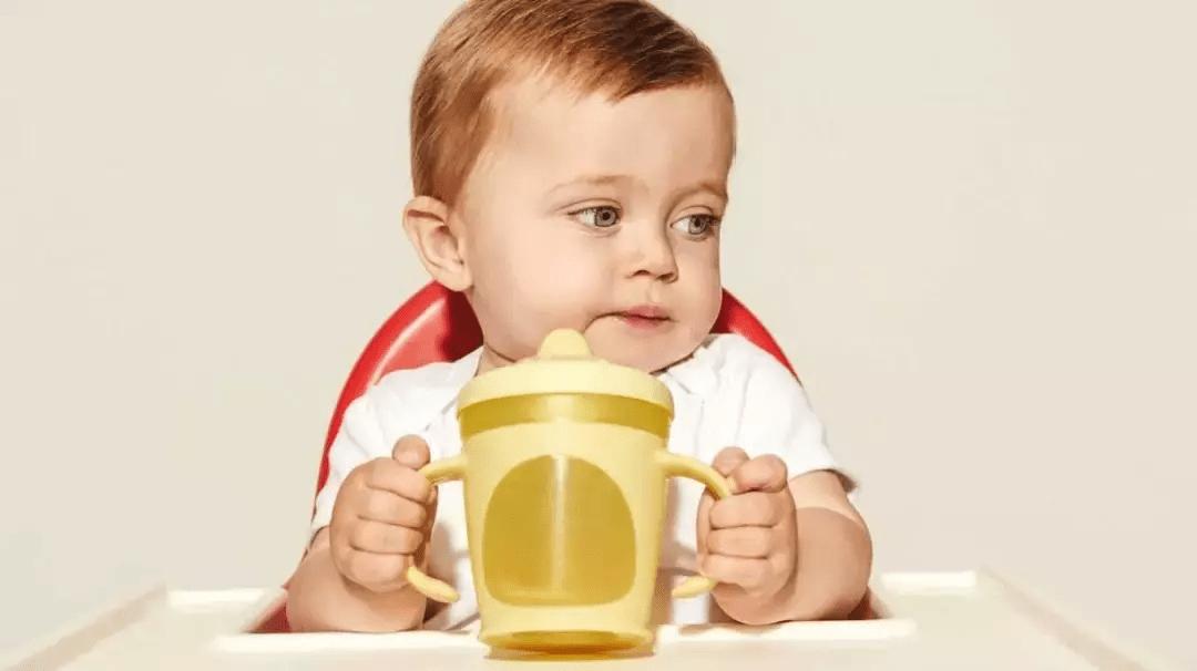 学饮杯哪种好(什么时候开始用直饮杯)插图(9)