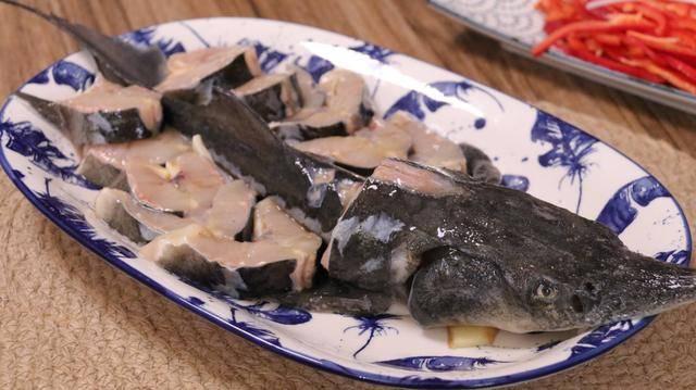 鲟龙鱼怎么做好吃(鲟龙鱼五种做法你一定不知道)插图