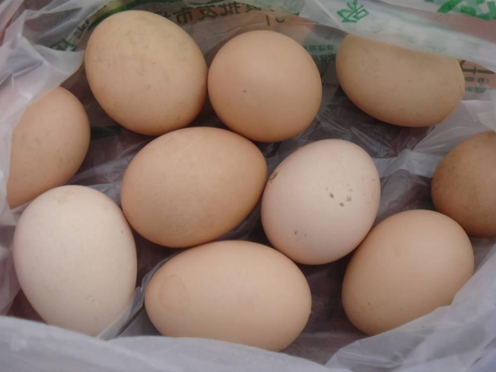 吃蛋黄发绿的鸡蛋,会导致贫血诱发肠癌?看看实验结果再吃也不迟