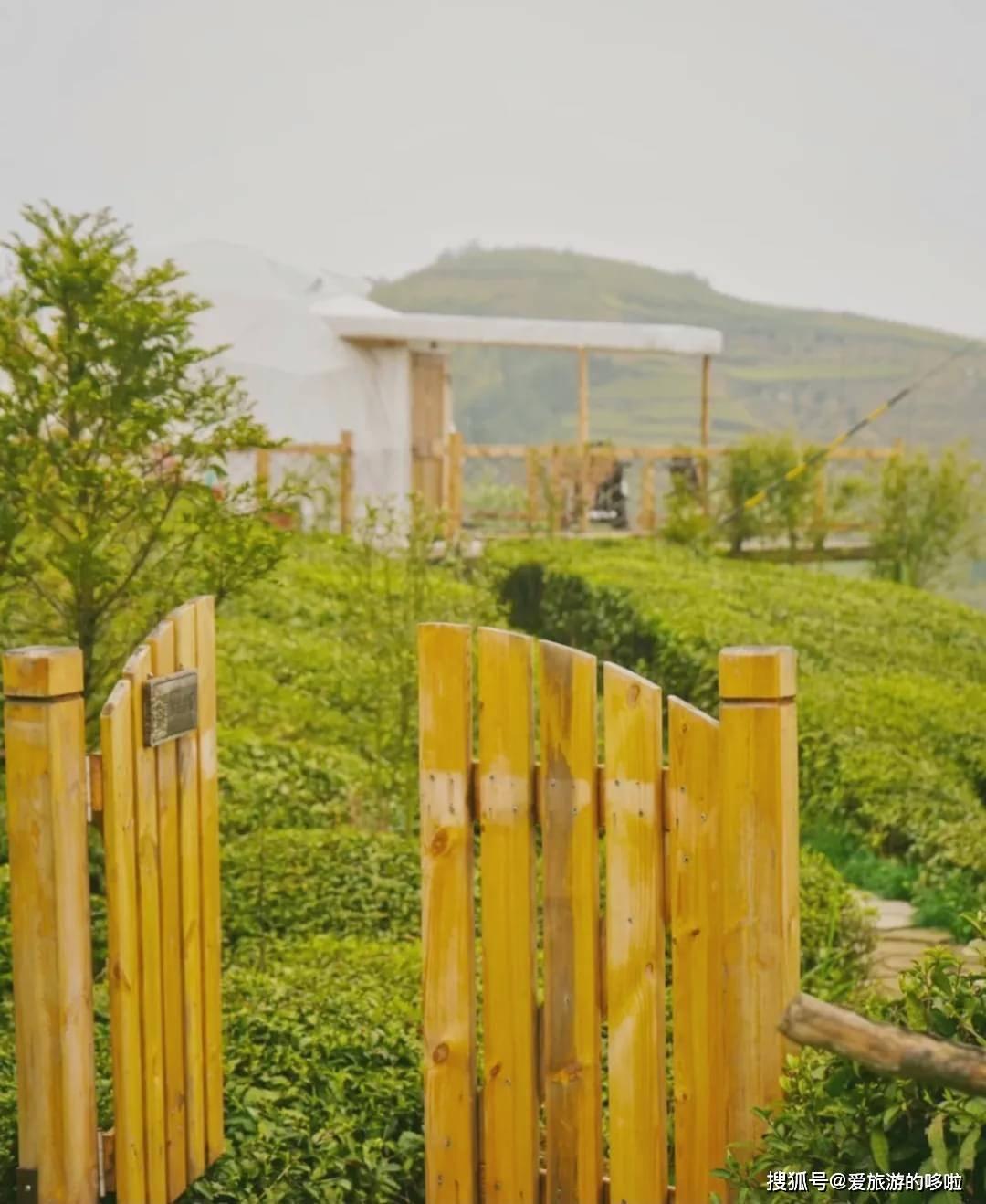 """杭州旁边深藏不露的美食小城,凭借小笼包斩获""""全球第一好吃"""""""