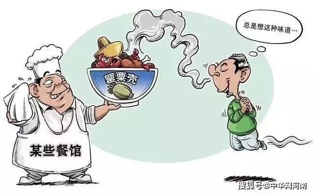 广东一火锅店老板在狗肉里放罂粟壳,致食客检出涉毒