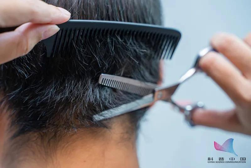 多久剪一次头发最好?大有讲究!都是理发师的私藏干货