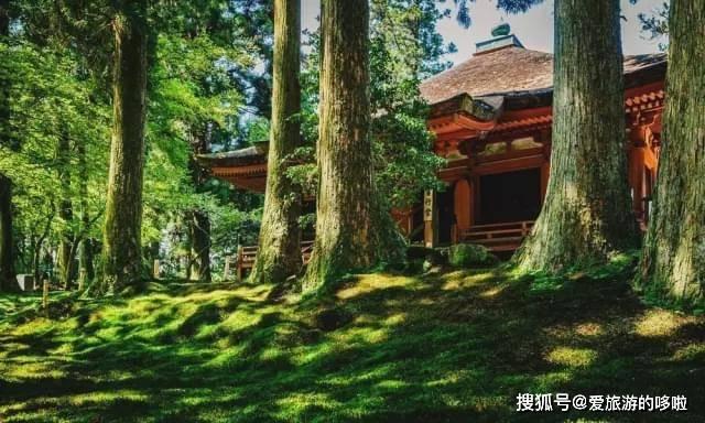 一份私藏交通攻略!京都游不可错过的景点!附上路线指南