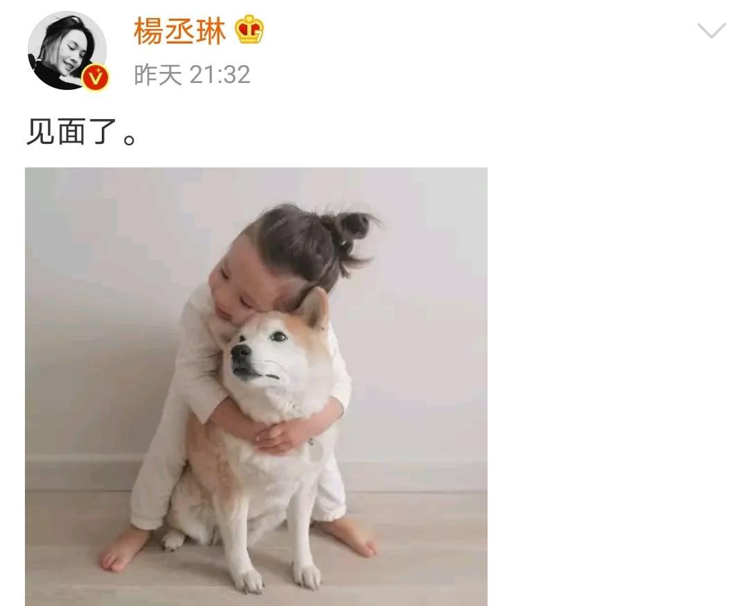 时隔300天杨丞琳李荣浩终于见面,网友催生:随时随地发现新孩子