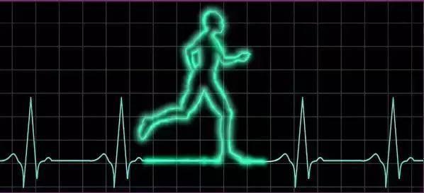 详解跑步心率的5个区间 助你提升训练效果_肌肉
