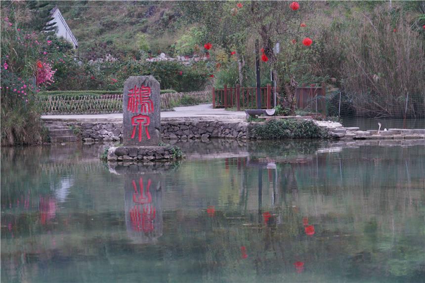 广西这个低调的景区,藏着一个明媚的春天,这里是德天瀑布的源头
