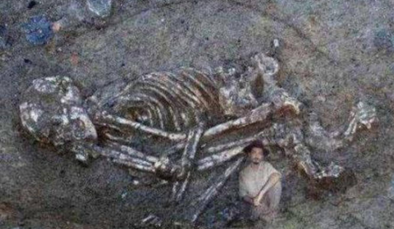 巨人族真实存在过吗 中国发现65米巨人骸骨