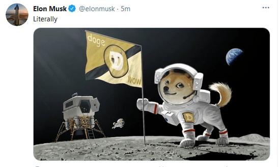狗币增幅扩大到20%,马斯克发布了狗币登陆外星球的图片