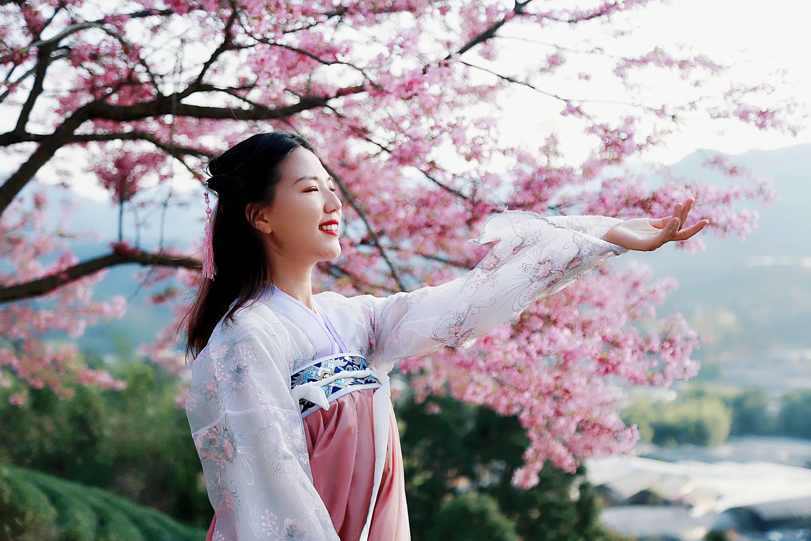 49bd94b0118c42d79c746f7cb136975f - A guide to viewing cherry blossoms in Fujian, China's most beautiful cherry blossom sacred land, Alishan on the mainland_台品- Sohu