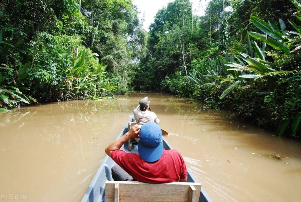 被称为地球禁区的亚马逊雨林,为什么没人穿越,可怕在哪些地方?