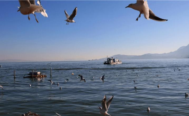 """自驾游去云南,""""昆明""""的海埂公园一定不要错过"""